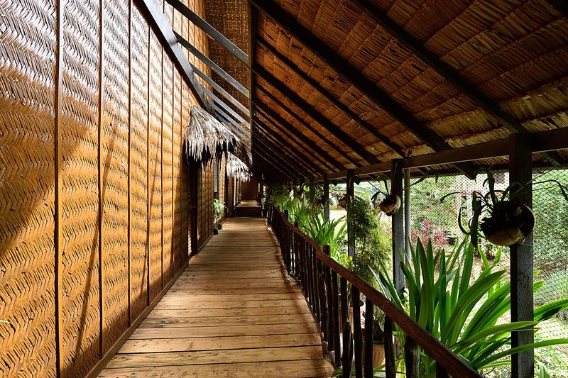 板張りの床、竹を編んだ壁、外には自然のヤシ
