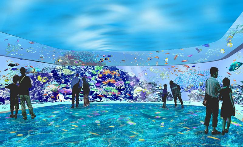 「サンゴ礁の海(仮称)」は鮮やかなサンゴ礁の海を感じるゾーン
