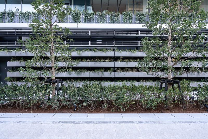 壁面緑化を含めて緑が豊富な植栽となっている