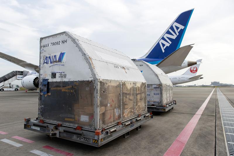ANA968便での貨物の取り卸し