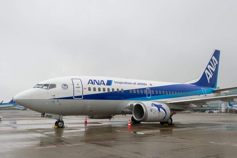 ANAグループのボーイング 737-500型機「スーパードルフィン」。最終号機となった登録記号「JA306K」の機体