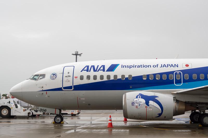 「JA305K」「JA306K」「JA307K」にはラストフライトに向けての特別デカールが貼られた