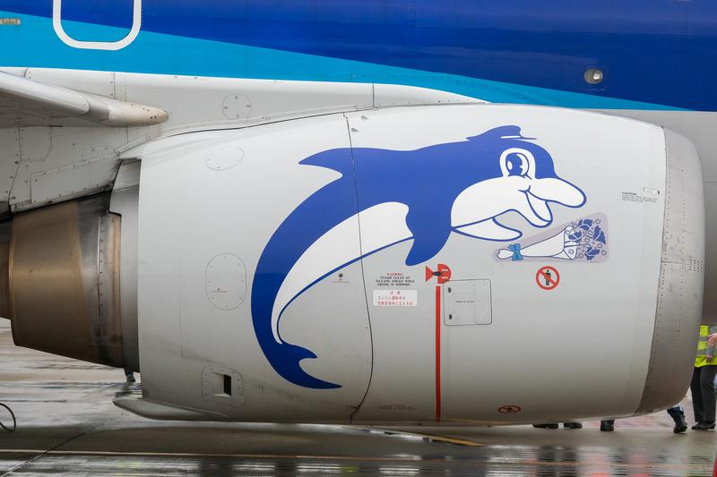 JA306Kの両エンジンカウルのイルカは「スイートピー」と「かすみ草」の花束を持って感謝の気持ちを表わした