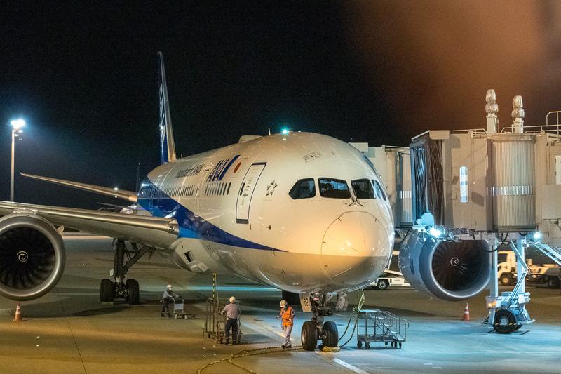 この日の最終運航を終えた機体へと進む清掃スタッフ。手にはアルコール消毒液とクロスの入ったカゴが