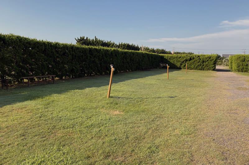 サイトは芝生張り。地面が柔らかいためペグの抜き差しに苦労することもない。また、サイトによってはベンチが設置されていた