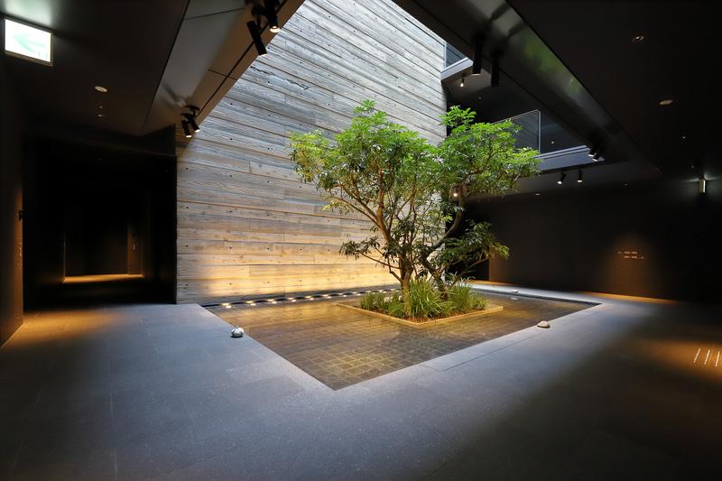 宿泊室の中央にある坪庭は、京町家の奥庭の趣。最上階まで吹き抜けになっていて、四季や天候によって表情が変わるそう