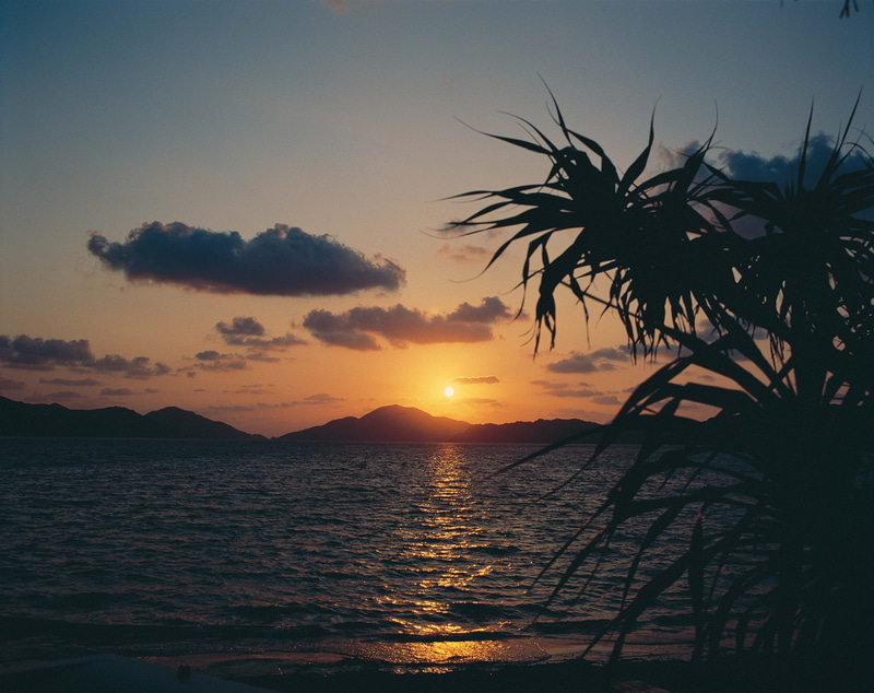 奄美大島の海(写真協力:公益社団法人鹿児島県観光連盟)