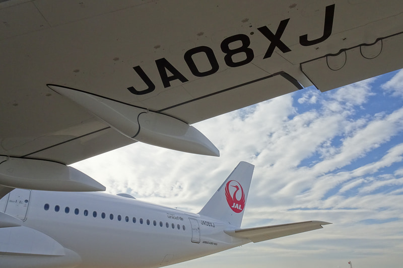 登録記号は「JA08XJ」(写真提供:日本航空)