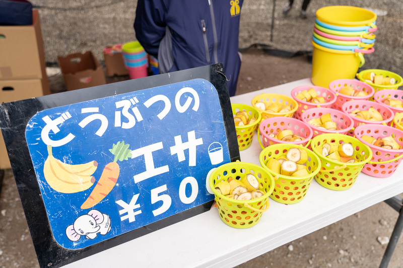 エサは500円で売っている