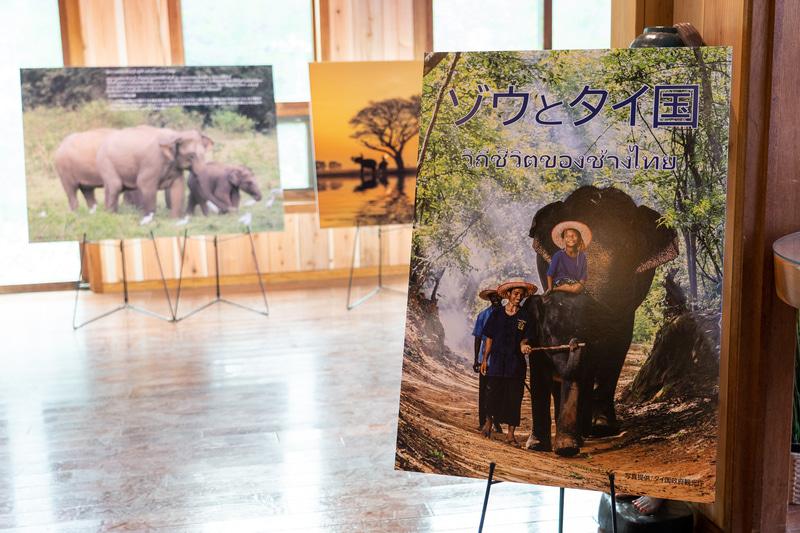 「エレファントギャラリー&タイミュージアム」では、タイとゾウの関わりやタイの魅力などをパネルで紹介している