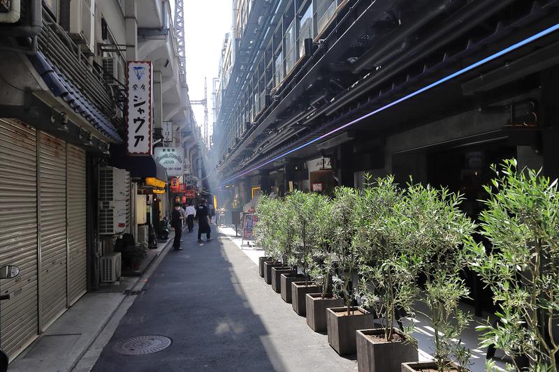 テラス席を植物で囲む店も。南側のテラス席は軒下になるので雨の日も使えそう