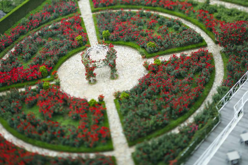 最盛期には32種3万輪の薔薇が見られる