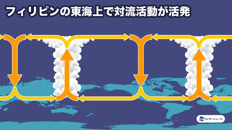 シーズン前半(7~8月)の大気循環模式図