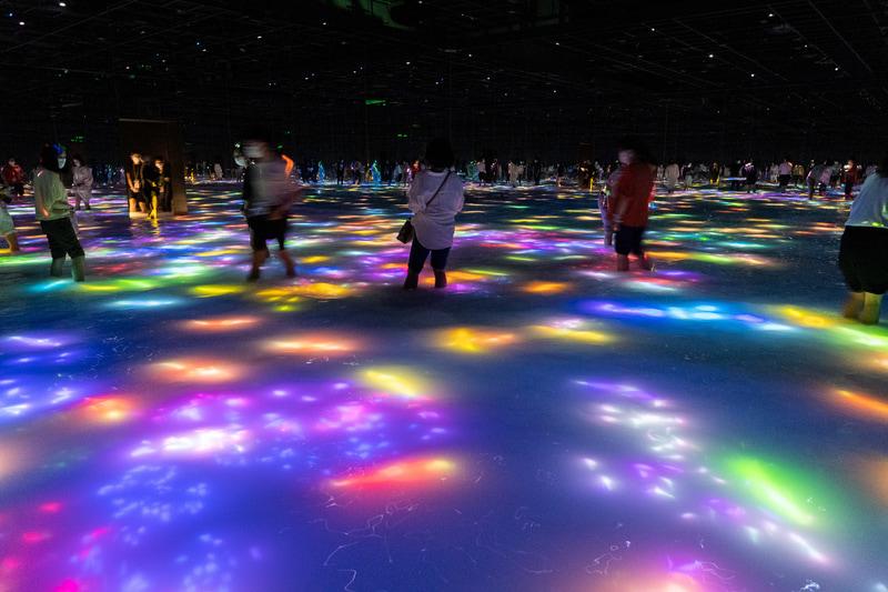 膝下まで水に浸かってデジタルアートの世界を体験できる