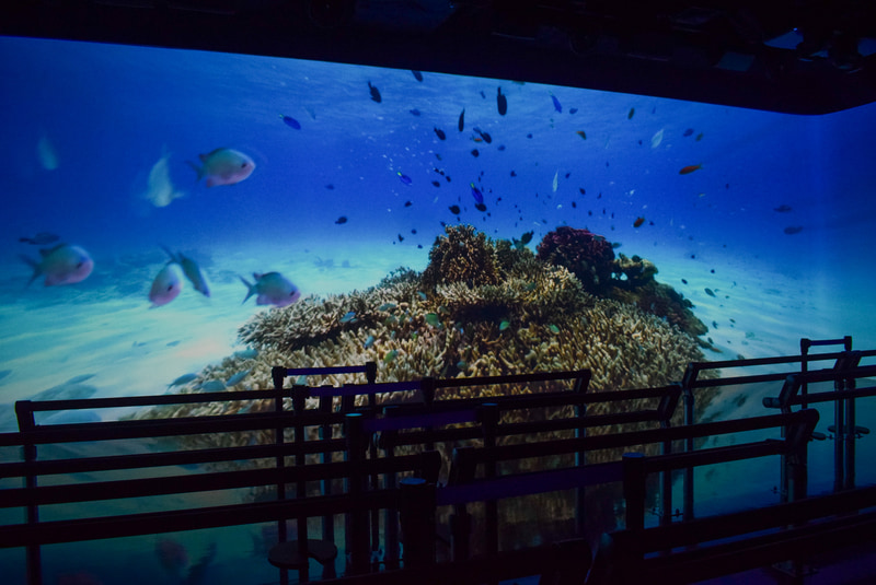 大型スクリーンいっぱいに広がる沖縄の自然。水中撮影やドローンによる臨場感ある映像が映し出される