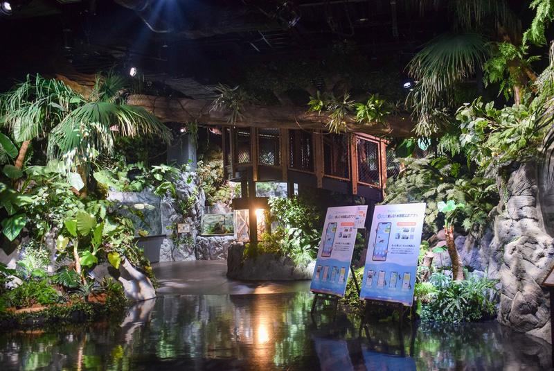 木々に覆われウッドデッキなども設置された展示エリア