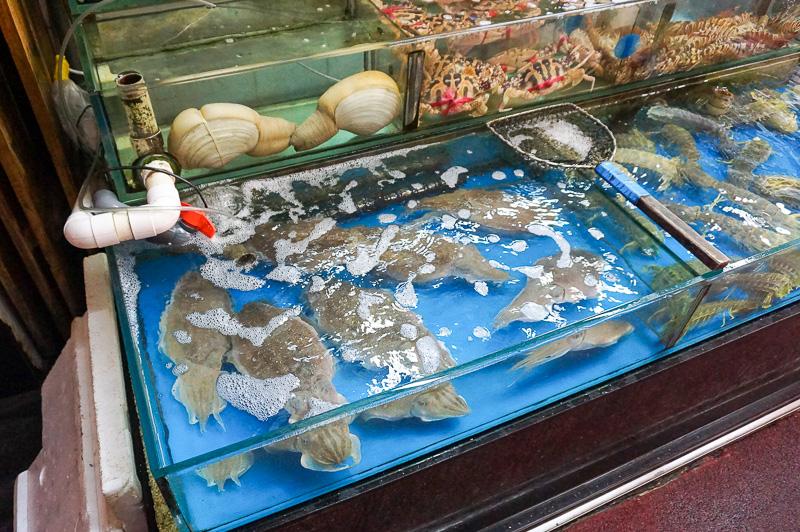 このように魚問屋には沢山の海鮮が並んでいる。レストランを併設しているところは、その場で注文したものを調理してくれる