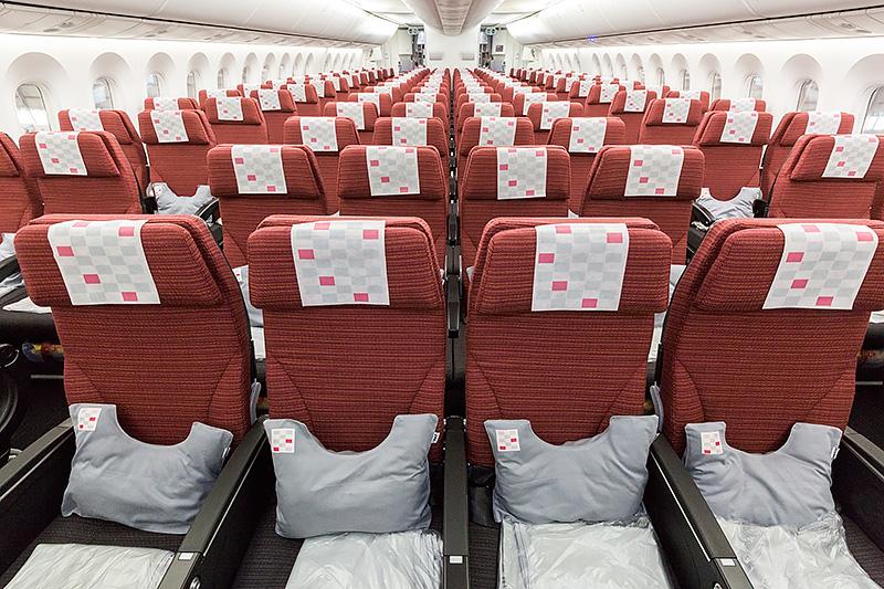 エコノミークラス全景。座席配置は2-4-2の8アブレスト仕様