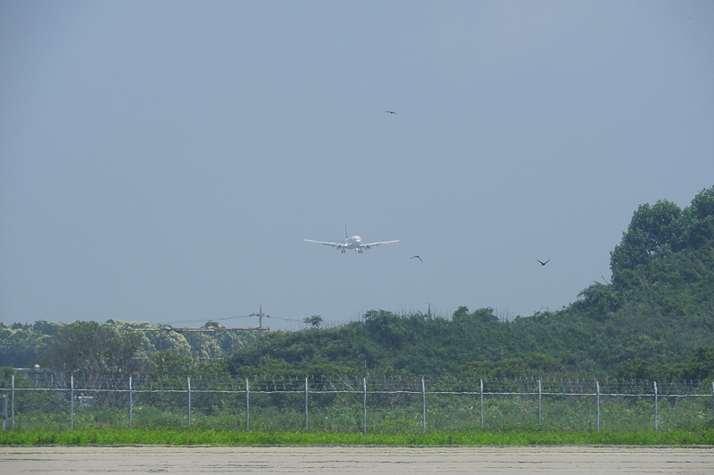 11時15分頃に茨城空港に着陸を行なうスカイマーク SKY182便の神戸発~茨城行きが姿を現した
