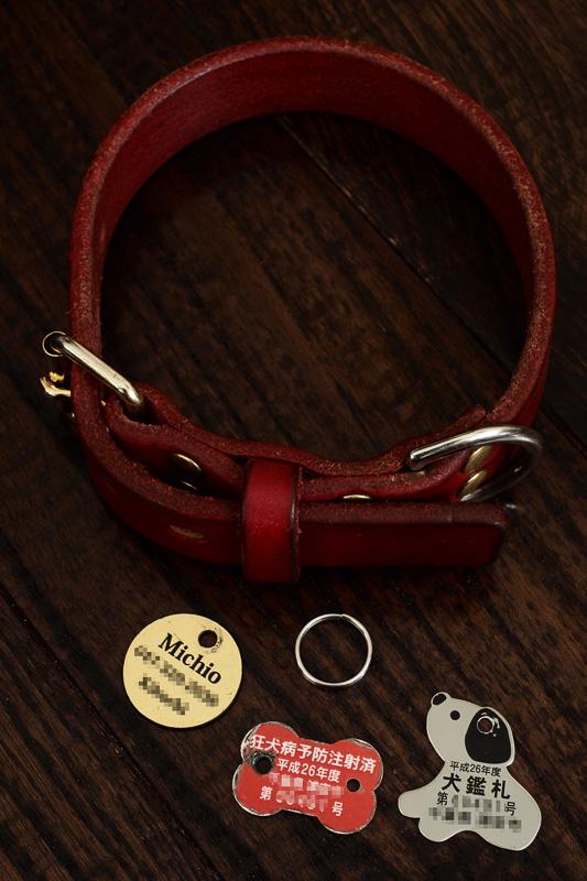 迷子札と狂犬病接種証明書、犬鑑札。万が一に備え、ペットの名前だけでなく飼い主の連絡先を記した迷子札を付けます。また、狂犬病接種証明書、犬鑑札の装着は義務なので必ず付けてくださいね