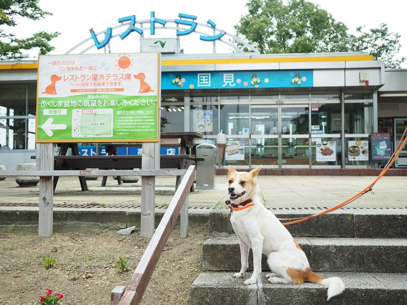 お昼に犬と一緒に食事ができるレストランのある福島県の国見SAに着きました