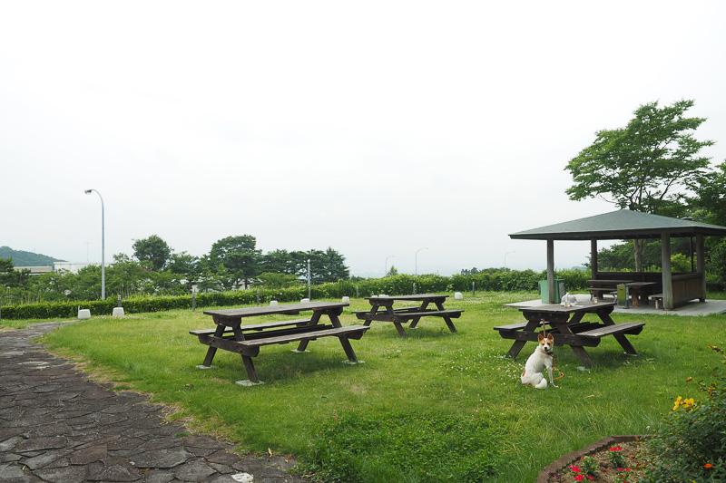 テラス席は3つ。天気のよい日には、ふくしま盆地の景色を楽しむことができます