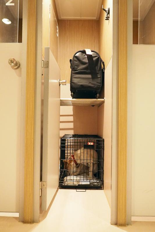 渡されたカギでペットルームのケージの扉を開けて、上の棚にキャリーを置き、みちおをケージの中に入れます