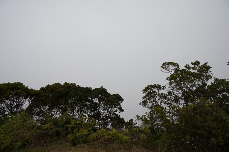 ナパリ・コースト方面を見ても真っ白