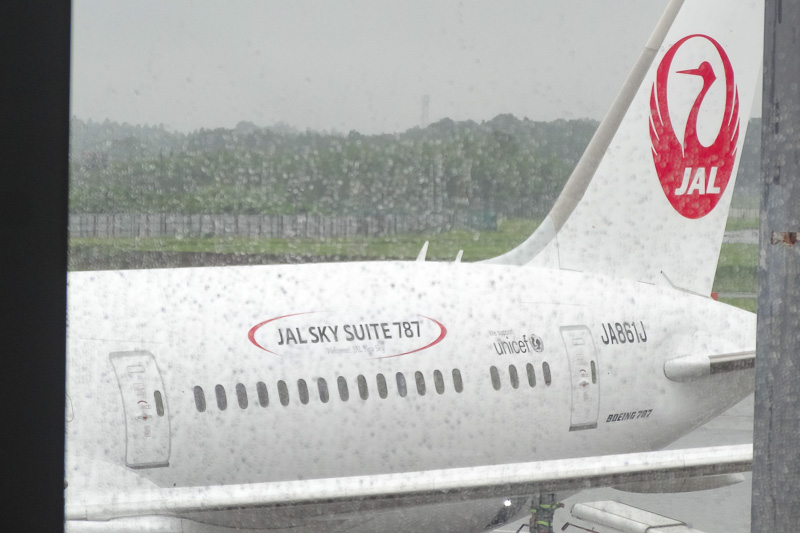 機体の記念撮影をするには向かないゲートだったが、JA861Jの登録記号や、JALへの納入後に貼られた「JAL SKY SUITE」のロゴはバッチリ確認できた