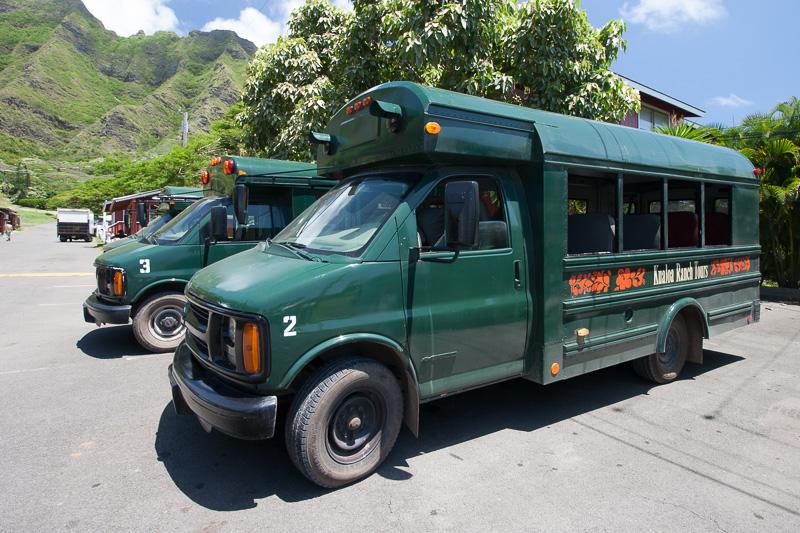 場内は広いので、このようなスクールバスを改造した車両でアクティビティポイントまで移動