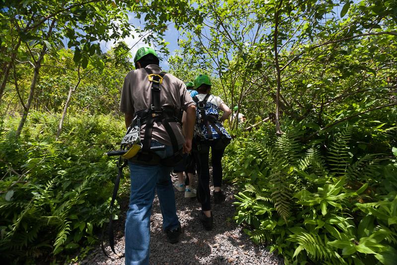 ジップラインのステーションまで徒歩で移動。結局、ハイキングだな~