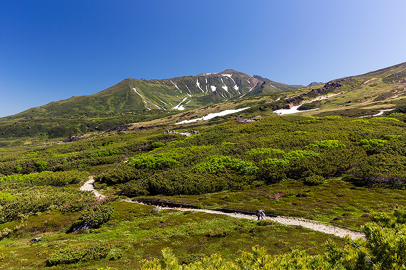自然探勝路からの風景