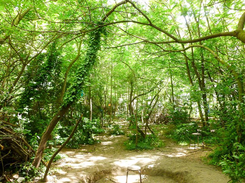騒がしい道路から一歩入るとそこはまさに森。空気が一瞬で変わりました