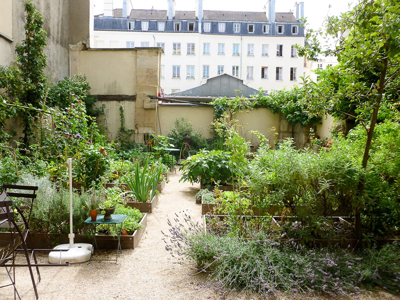 「Le Potager des Oiseaux」という共有庭園。パリで一番古い常設市場「Marche des Enfants Rouges」のすぐ横にあるのですが、塀でうまく隠れているので気が付く人は少ないようです