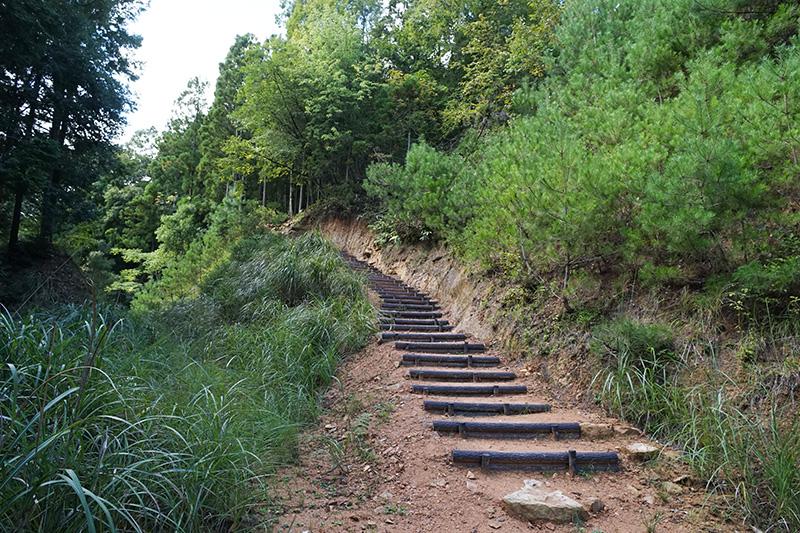 登山道は階段が整備されている