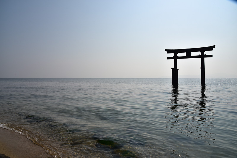 琵琶湖にたたずむ湖中大鳥居。湖岸より約58m。湖面より高さ10m、柱間約8m。天気の良い日には琵琶湖最大の沖ノ島も見える
