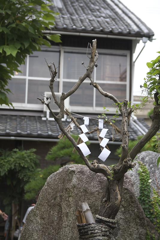 趣のある庭にたたずむ連理木。筆者ももう一度訪れたいスポットだ