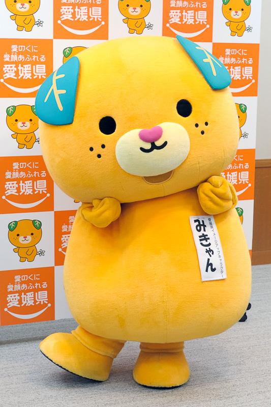 愛媛県のイメージアップキャラクターの「みきゃん」。ゆるキャラグランプリ2015でてっぺんをとることを目指している