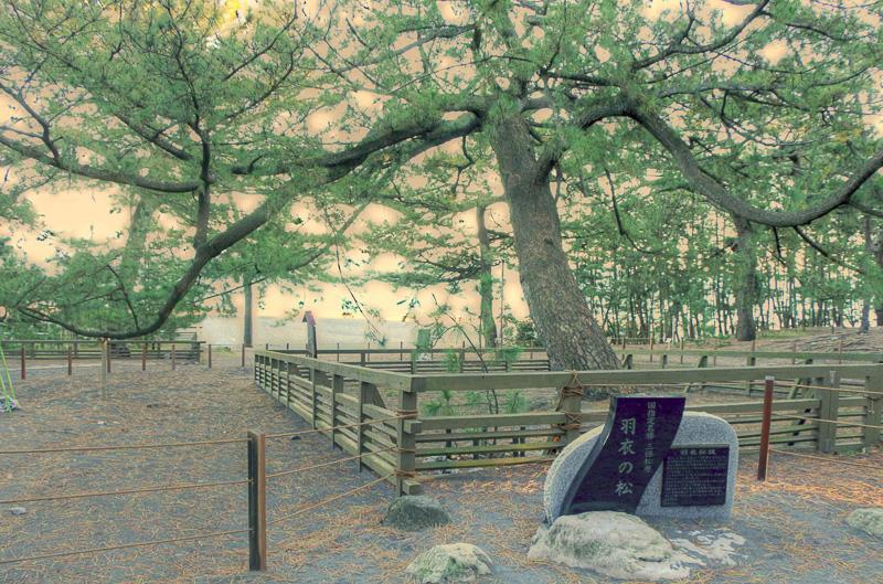羽衣伝説で有名な「羽衣の松」、三保松原に憧れながら35歳で世を去ったフランスの舞踏家エレーヌ・ジュグラリスの碑や、御穂神社の離宮「羽車神社」もある