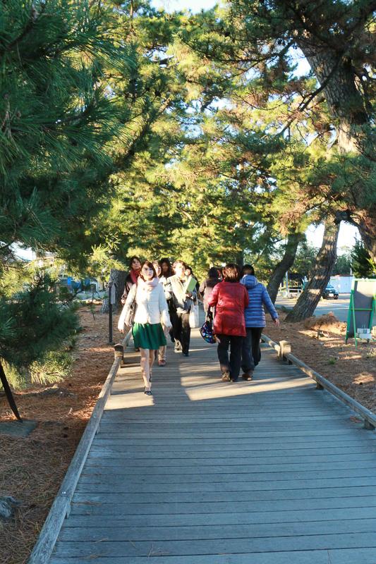 国土和平のため、羽車に乗って三保の浦に降臨した神に御穂神社にご鎮座いただいたので、三保松原までの道は「神の道」と呼ばれている