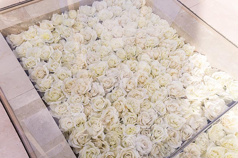 バラは手前から徐々に花びらが開き、時の流れを示する