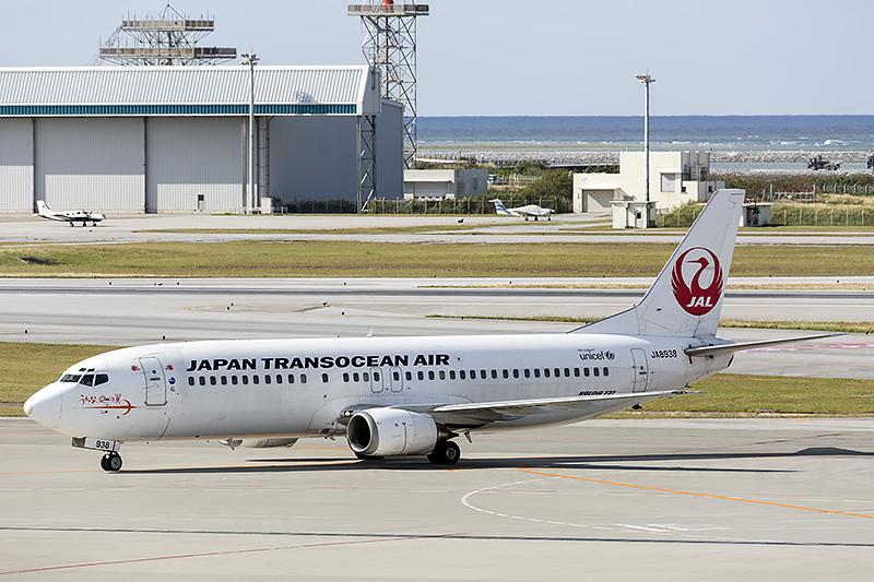 ボーイング 737-400型機にイリオモテヤマネコ発見50年を記念したデカールを貼付