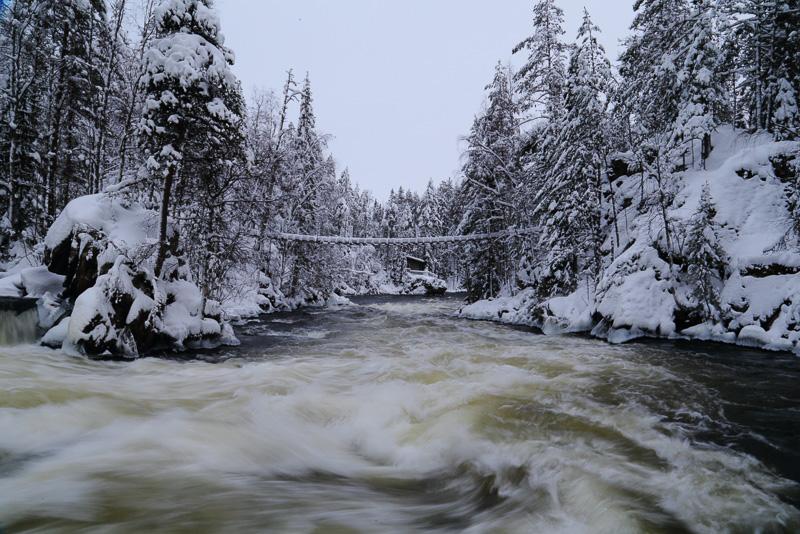 川はちょっと怖いくらいの水量です
