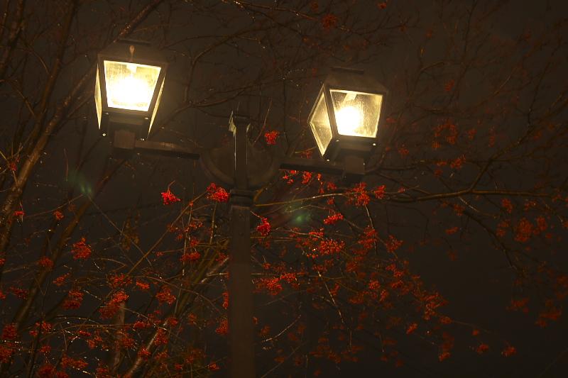 小樽運河のライトアップは22時30分まで、ガス灯は日没から24時まで灯されている。昼間とは違った趣のある風情に