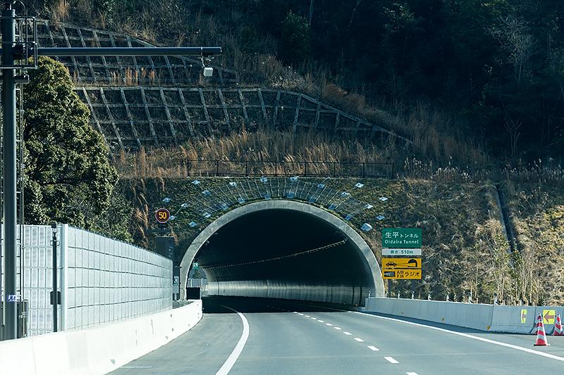 トンネル入り口まわりにもアンカーが打ち込まれている