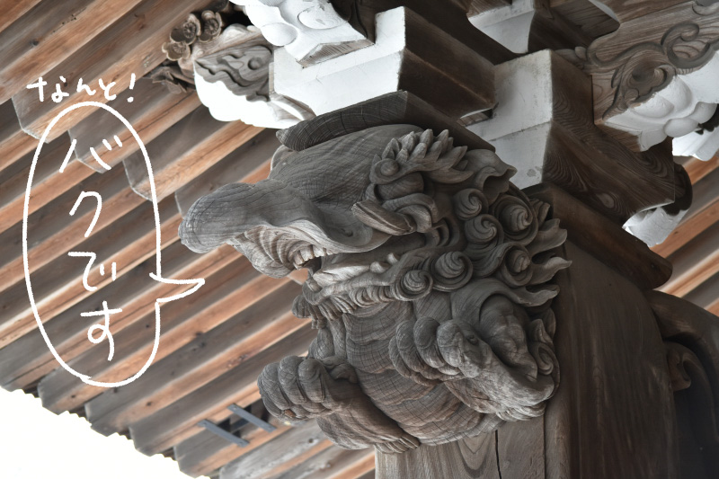 柱に施された彫刻が見事。双眼鏡でじっくり眺めたいっ!