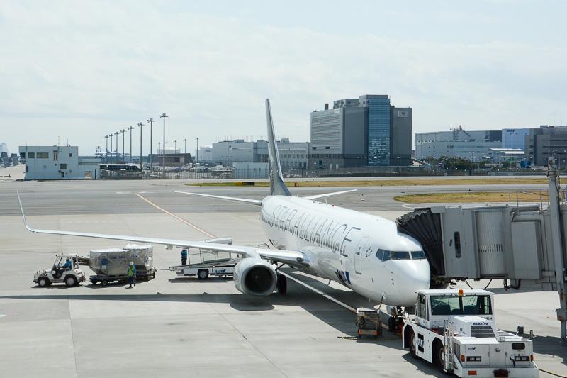 羽田発~宮古行きのANA87便初便はスターアライアンス塗装のJA51AN(登録記号)を使用