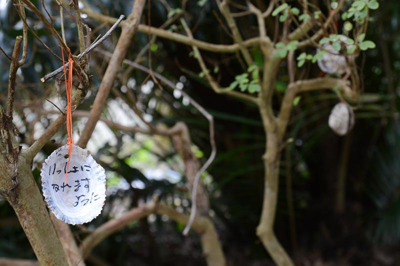 小山神社は縁結びの神様ということで貝を絵馬のように使って願い事を書くという