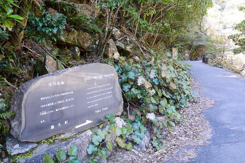 駐車場から歩いてすぐなのでアクセスがしやすい大川の滝