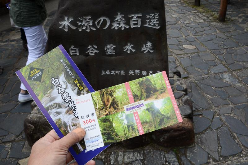 森林環境整備推進協力金の名目で大人(高校生以上)は300円を支払って入場する